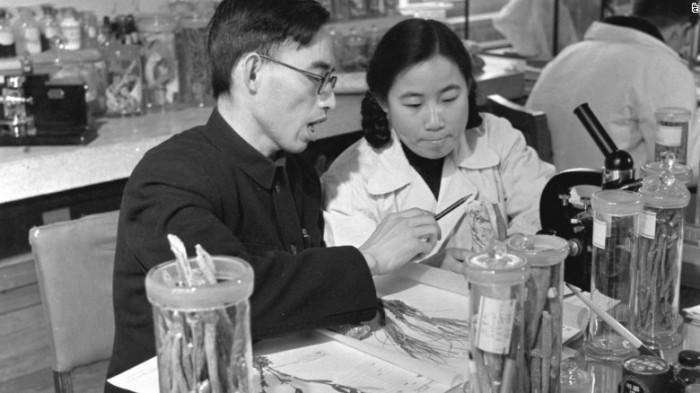 Youyou Tu mit Prof. Lou Zhicen im Labor im Peking. Seit Jahrzehnten forscht sie an der dortigen China Academy of Chinese Medical Sciences, heute ist sie Forschungsleiterin. Photo: Xinhua