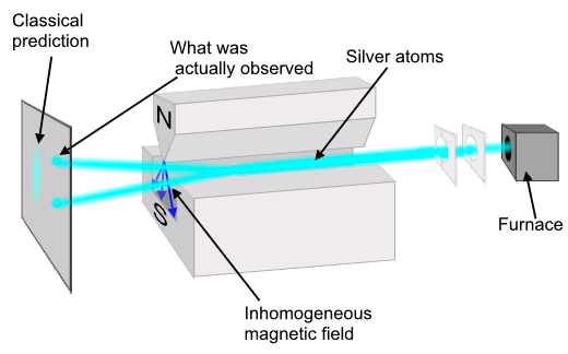 Figure 7: The Stern Gerlach experiment demonstrates the existence of quantum binary. Classically, an atom should have a continuous spin distribution. This spin produces a magnetic field around the atom. Therefore, a magnet should separate the atoms into a continuous distribution. Instead, in the famous Stern-Gerlach experiment, they found only two spots. This showed the atoms were only spinning in two possible directions. When created at the furnace, the spin of the atom exists in a superposition of these two states. Like the cat, this superposition is destroyed when measured. In this case, the measurement is done by North and South magnets. Picture: Theresa Knott (CC BY-SA 3.0)