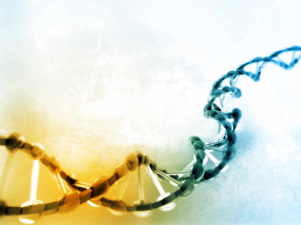 Artistic depiction of a DNA double helix. Photo: iStock.com/HAYWARDS