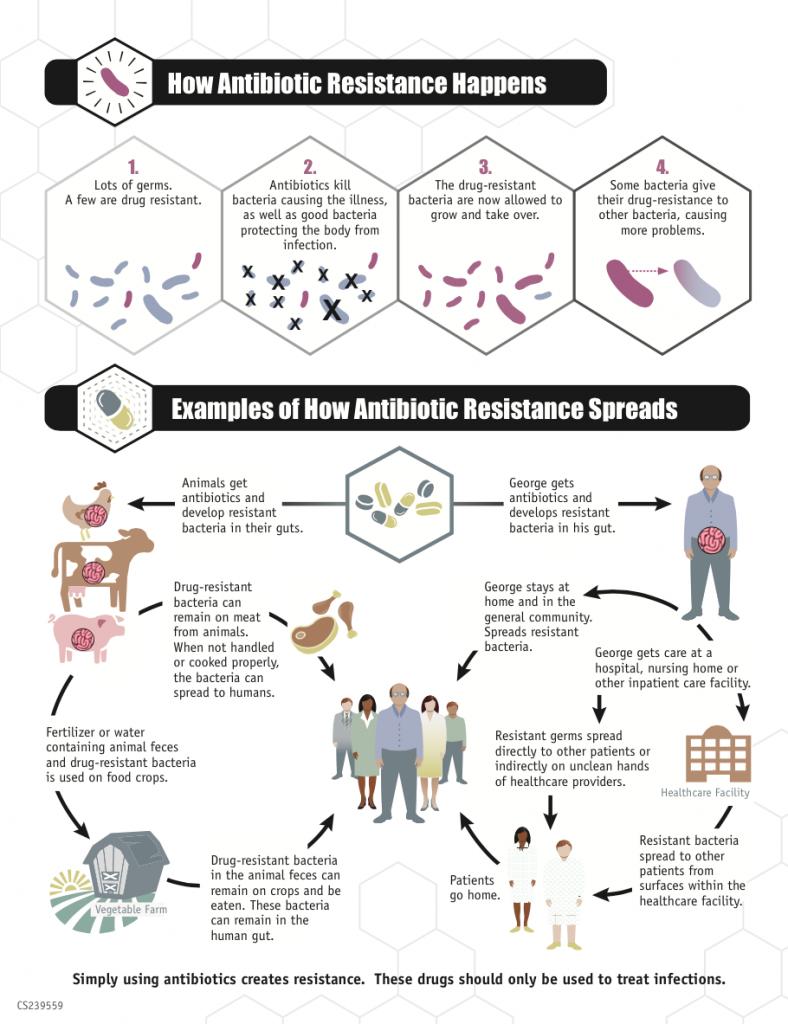 Schautafel der US-Gesundheitsbehörde CDC über die Entstehung von Resistenzen. Das Problem der verseuchten Abwässer ist hier nicht berücksichtigt. Copyright: Centers for Disease Control and Prevention, 2013 Public Domain