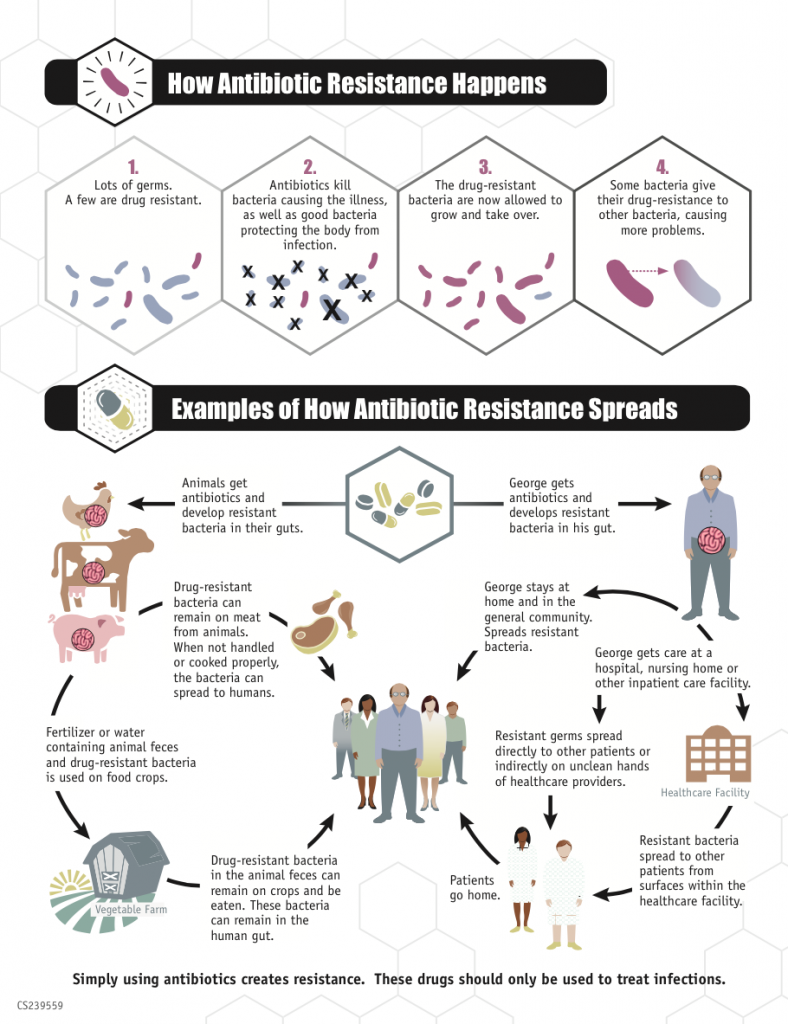 Sign by the US Centers for Disease Control and Prevention CDC how antibiotic resistances occur - you use them and you lose them. But in this graph, large-scale pollution with resistant bacteria is not even included. Image: Centers for Disease Control and Prevention, 2013 Public Domain