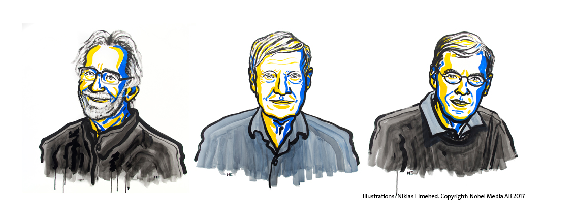 The 2017 Nobel Laureates in Chemistry: Jacques Dubochet, Joachim Frank, and Richard Henderson (from left). Illustrations: Niklas Elmehed. Copyright: Nobel Media AB 2017