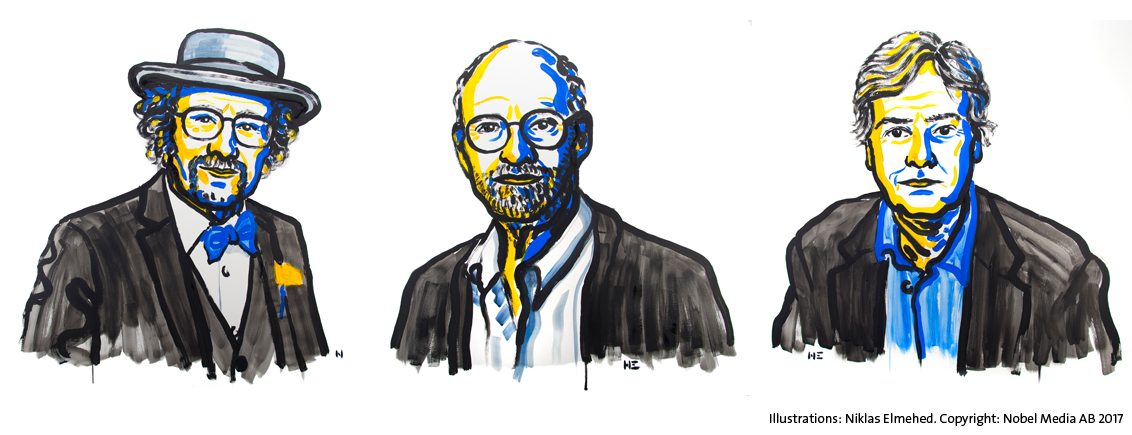2017 Nobel Laureates in Physiology or Medicine: Jeffrey C. Hall, Michael Rosbash and Michael W. Young. Illustration: Niklas Elmehed. Copyright: Nobel Media AB 2017
