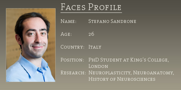 faces_profile_sandrone