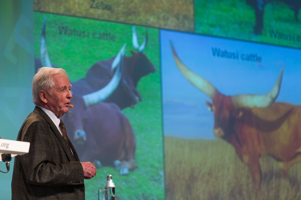 Harald zur Hausen during his talk in Lindau 2014 Credit: Christian Flemming / Lindau Nobel Laureate Meetings