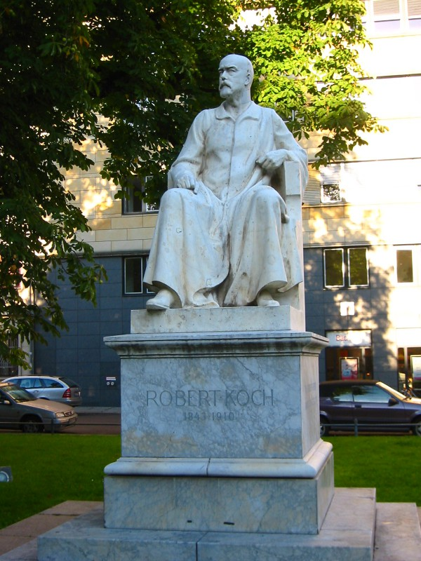 Statue of Rober Koch in front of the Charité University Hospital in Berlin. Koch died in 1910, aged 76, in a Baden-Baden sanatorium. Photo: Andreas Steinhoff