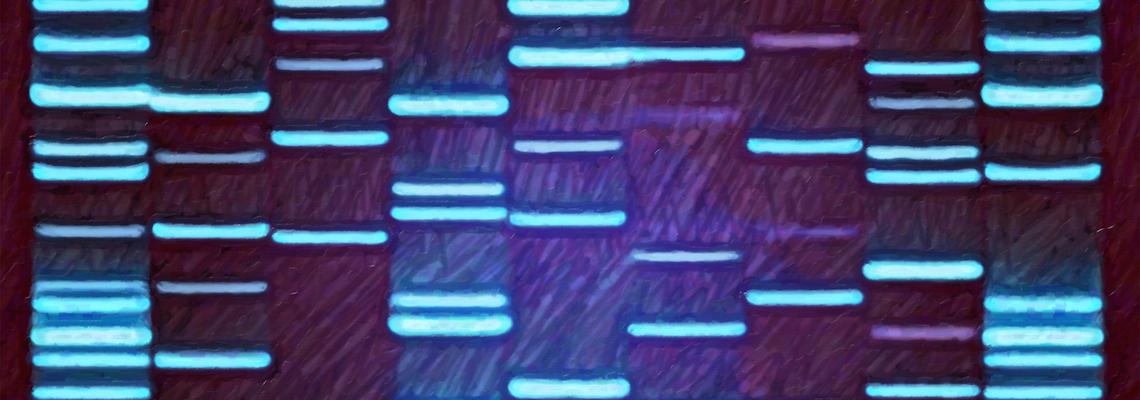 Epigenetics – How the Environment Influences Our Genes
