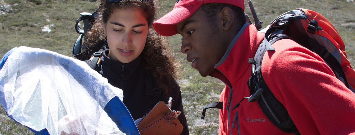 Citizen Science – What Citizens Contribute to Research