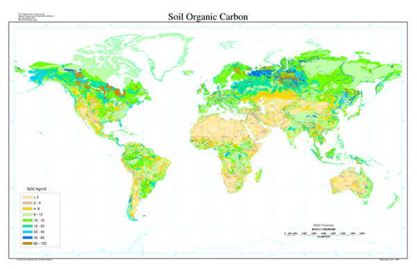 Map of the distribution of soil organic carbon showing a concentration at northern latitudes. Image Credit:  FAO-UNESCO, Soil Map of the World, digitized by ESRI. Soil climate map, USDA-NRCS, Soil Science Division, World Soil Resources, Washington D.C. Soil Pedon database, USDA-NRCS National Soil Survey Center, Lincoln, NE.