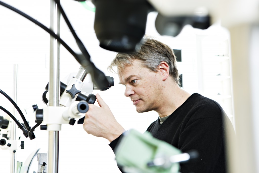 Edvard Moser at work