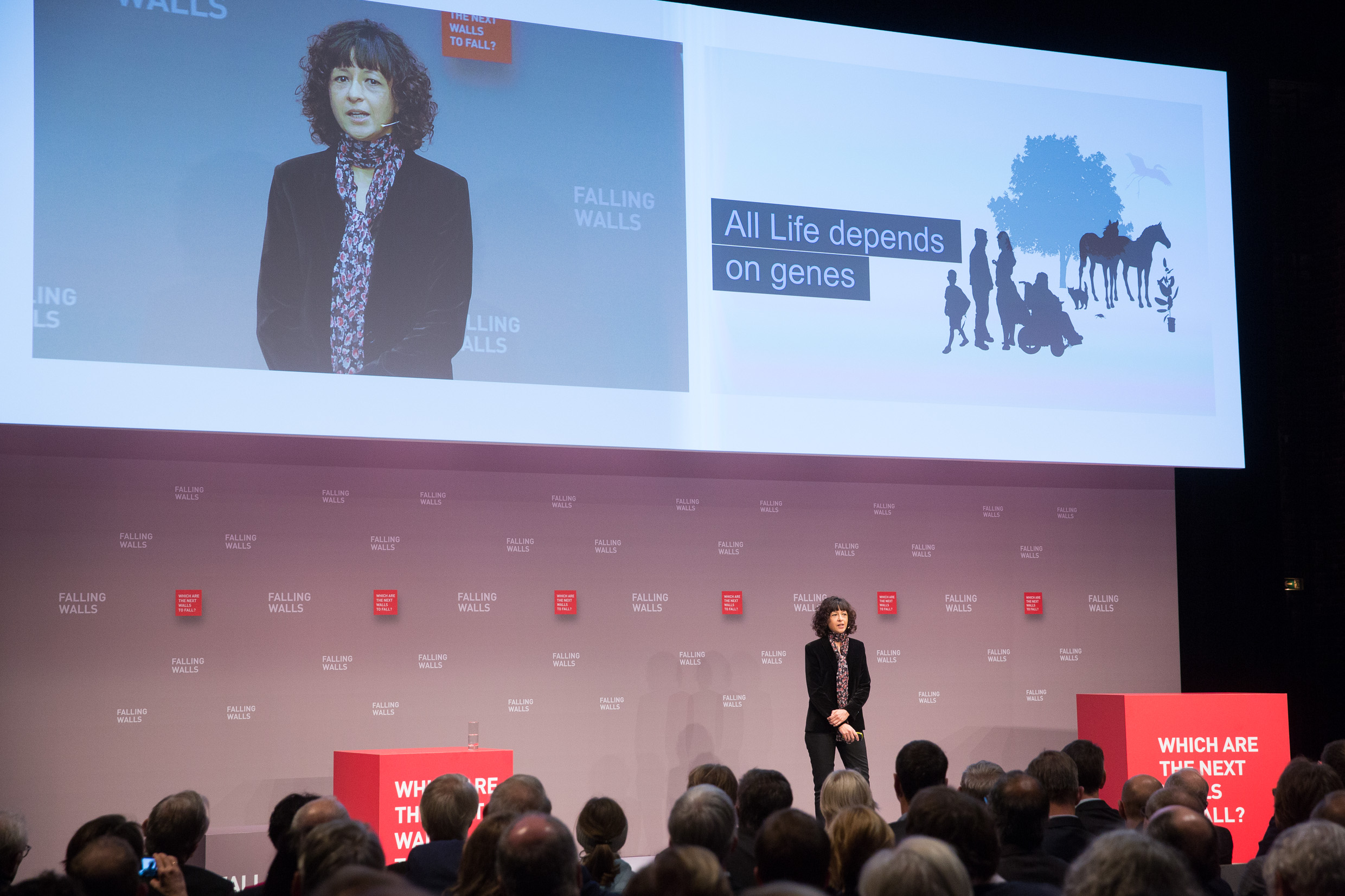 Lecture Emmanuelle Charpentier at Falling Walls Conference,  November 2015, Berlin. Photo: Kay Herschelmann