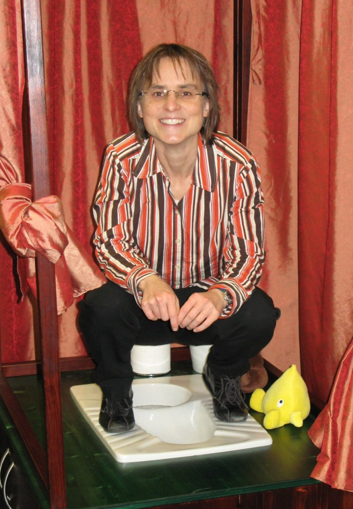 Demonstration of how to use a UDDT at GIZ (Deutsche Gesellschaft für Internationale Zusammenarbeit): the user doesn't need to change position in order to have urine and faeces collect separately. Photo: SuSanA Secretariat