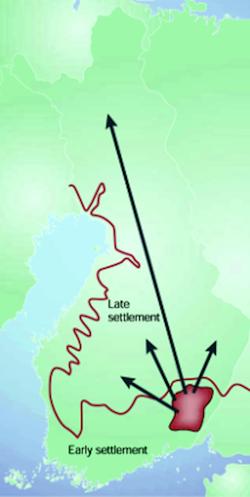 Die am stärksten von den FDH-Krankheiten betroffenen Finnen lebten im Südosten von Finnland. Ab dem 16. Jahrhundert gründeten sie Dörfer weiter im Norden, wodurch die genetische Viefalft weiter abnahm. Bild: findis.org