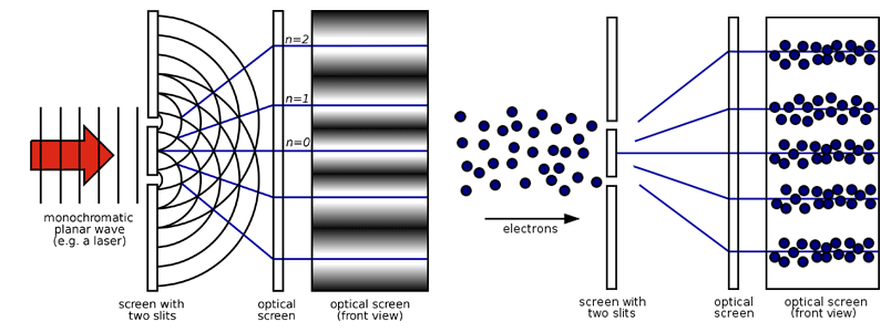 Figure 8: (Left) Light passing through two slits produces an interference pattern on a screen. The two slits cause the light waves to constructively or destructively interfere, resulting in bright and dark spots on the screen. Constructive interference is where peaks or dips of a wave add together. Destructive interference occurs when a peak meets a dip. (Right) Quantum superposition says the electron can exist at all possible positions in space. The likelihood the electron is found at each point in space is given by a probability wave. This probability wave gives an interference pattern like a light wave. Figure: Public Domain