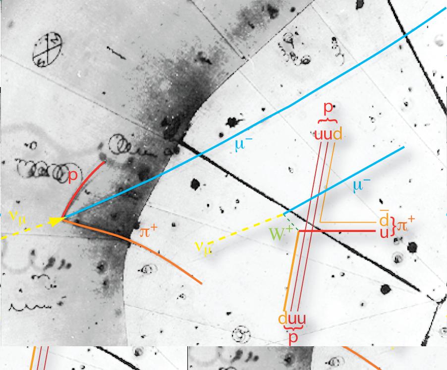 Nachweis von Neutrinos in einer Nebelkammer (Bild: Argonne National Laboratory, public domain)