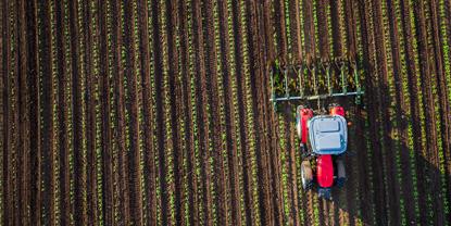Können Superpflanzen unser Hungerproblem lösen?