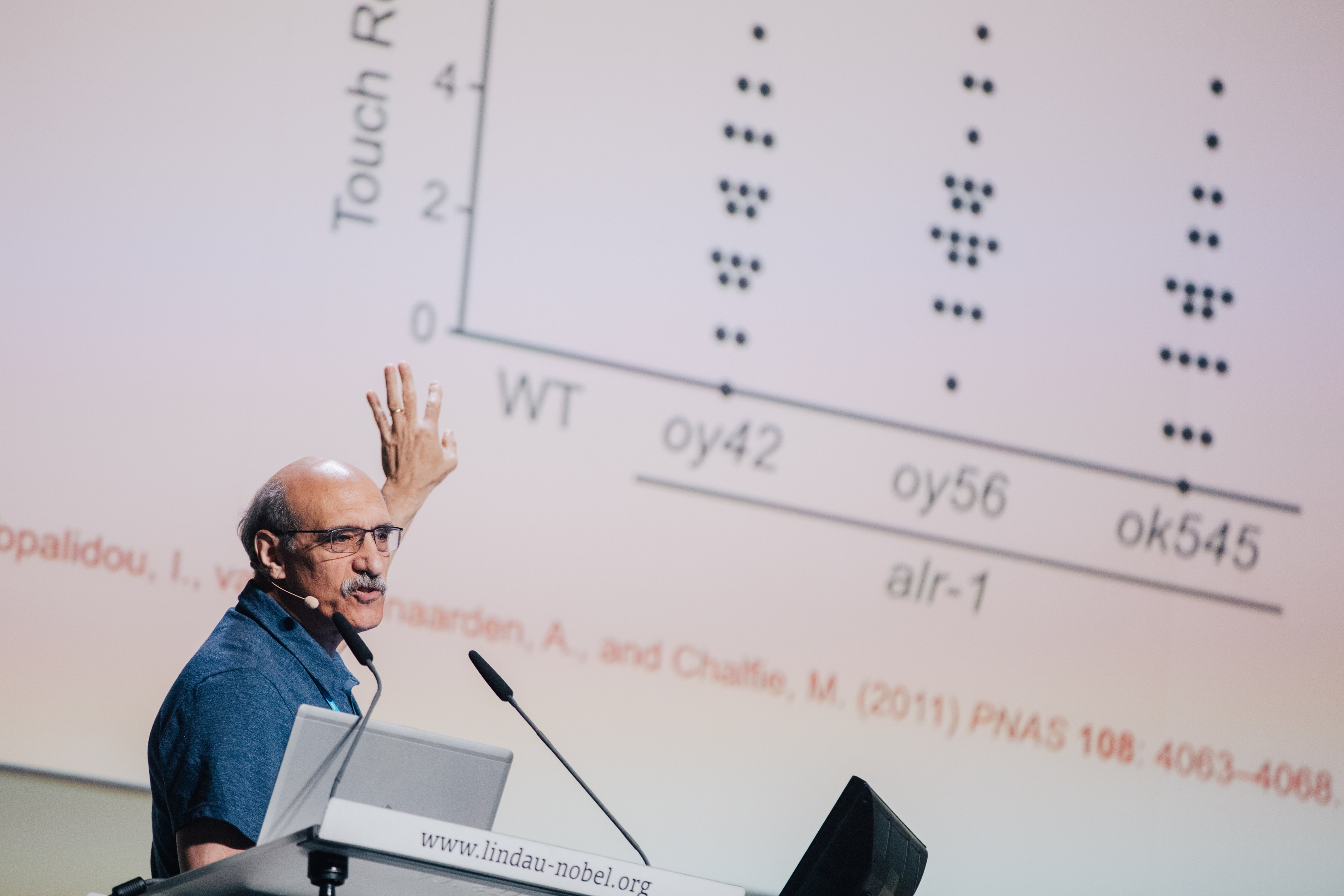 Martin Chalfie in seiner Lecture, 67. Nobelpreisträgertagung (Chemie), Foto: Julia Nimke/Lindau Nobel Laureate Meetings