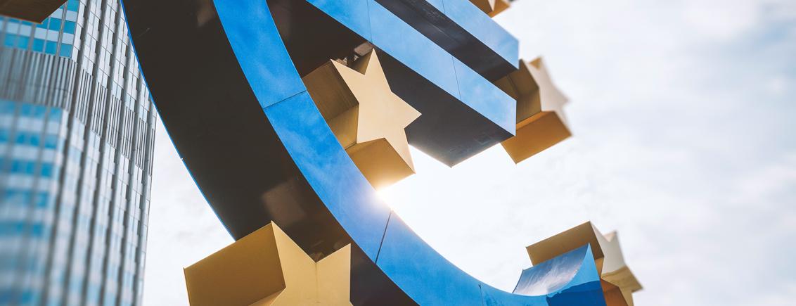 On the Future of the Euro Area