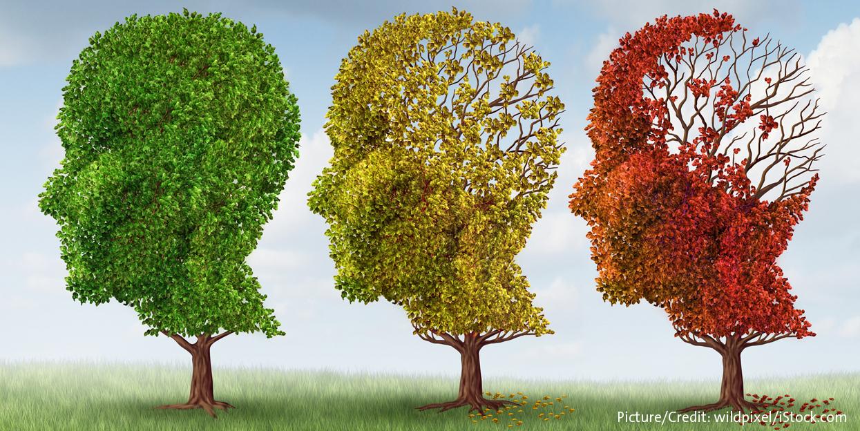 Das alternde Gehirn