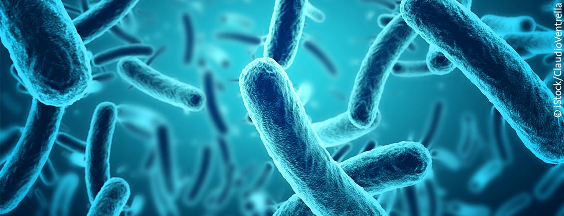 Das Mikrobiom – Wir sind nicht allein