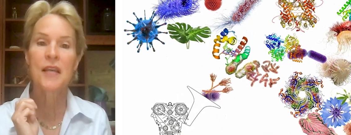 Chemie: Von der Natur lernen für eine nachhaltige Zukunft