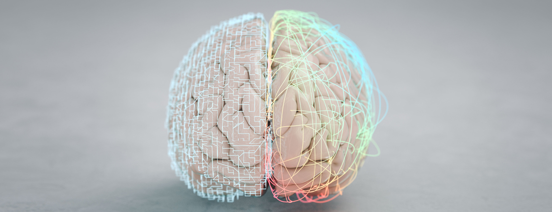 Neuroscience: Meeting in the Middle