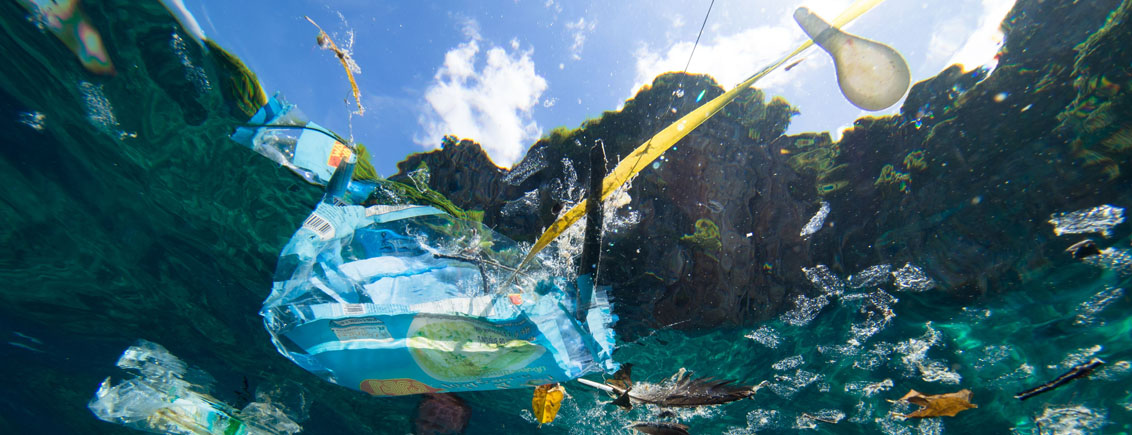 How Bacteria and Protein Engineering Could be Harnessed to Tackle our Plastic Problem