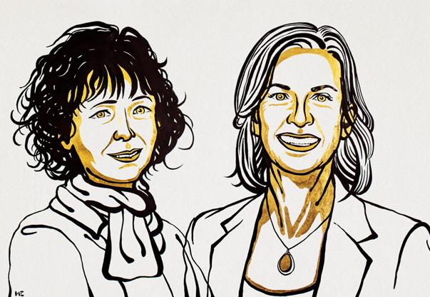 Genetic Scissors: 2020 Nobel Prize in Chemistry