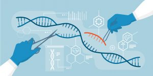 Genetic scissor