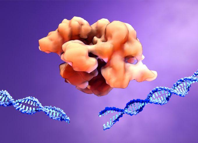 CRISPR is coming? CRISPR is already here